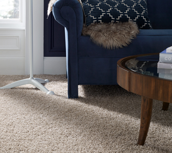 Tuftex Carpet Roomscene