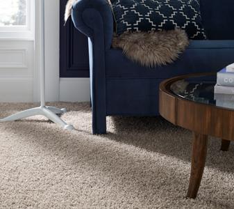 Tuftex Carpet Roomscene